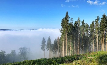 А в долине туман.. / Видна противоположная гора, светит солнце, а в долине пока еще туман..