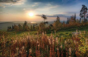 Осенние цветы / Уральская осень