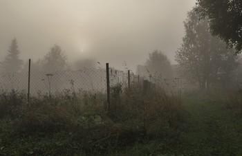 """Утренний туман ... / """"Утренний туман  уходит тихонько туда,  куда ему надо ...""""  Танэда Сантока"""