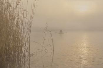 В туман / рыбалка на хищника