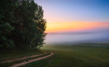 Дорожка налево / Пейзаж Беларуси
