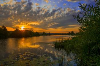Август. / Рассвет на озере Сосновое, юго-восток Московской области. Мещера.