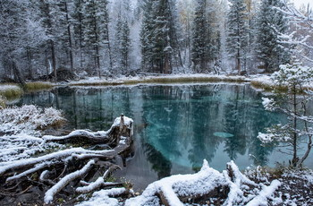 Гейзерное озеро. / Озеро небольшое по размеру, вода в нем прозрачная, но купаться здесь нельзя. Со дна озера бьют 4 маленьких ключа, они выбрасывают на поверхность круги голубой глины, которая создает причудливые узоры. Выбросы глины не регулярные, кругов может быть от одного до четырех.Что удивительно, поверхность воды при этом всегда остается совершенно гладкой и в ней разыгрывается красивейшее шоу.Рисунки кругов постоянно меняются.