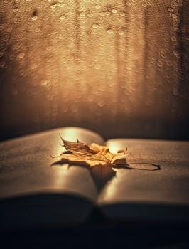 Время уютного чтения / Время уютного чтения