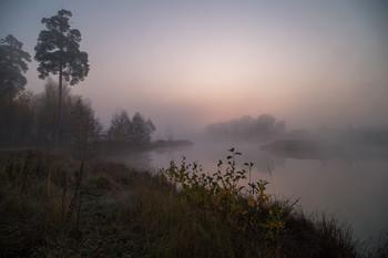 Тишина / утро, туман, Фрязино, Гребнево