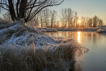 Морозным утром. / мороз,ноябрь,рассвет