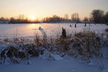 Зимняя тишина / зима,мороз,озеро