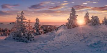 / Morgens auf der Stubalpe in der Steiermark.