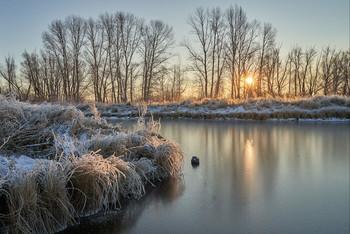 Морозным утром. / мороз,рассвет,озеро