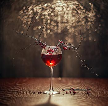 Вино / Вино