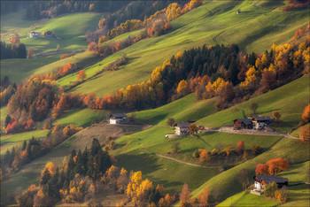 Жизнь на холмах / Золотая осень в Вал ди Фунес