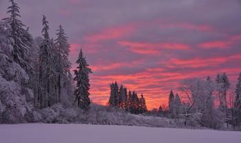 / Winterworld im Knüllgebirge.