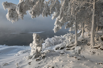 Зимнее украшение. / В большие морозы все деревья у реки покрываются толстым слоем инея. Берег превращается в настоящую сказку .Каждая веточка и каждый кустик смотрится как настоящее украшение.