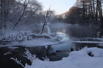 Уточки / На реке мороз