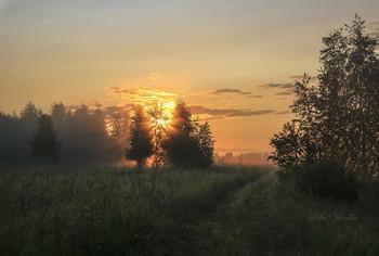 Утро раннее. / Тверская область.