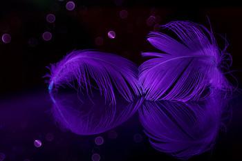 Нежность... / 2021... съемка при ультрафиолетовом освещении...