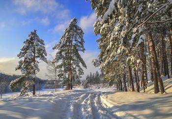 Морозный день. / Подмосковье в солнечный ,зимний день.