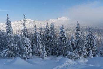 Зима / зима,горы,снег