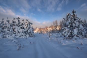 зимнее утро / ***