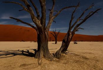 В пустыне под звездами / Долина Дедвлей в пустыне Намиб, Намибия