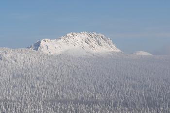 / горы,зима,лес