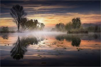 / Morgens an einem kleinen Teich in der Steiermark.