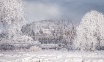 Зима на старице Усени / снег, иней, зима