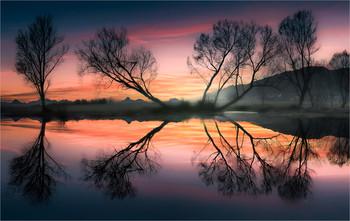 / Abends an einem kleinen Teich in der Steiermark.