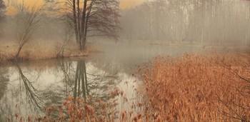 Вспоминая осень / осенние туманы