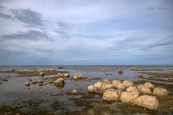 Озеро камней. / Чудское озеро.