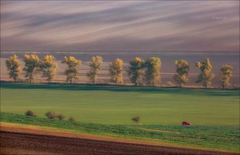 RED JUMPY / Южная - Моравия