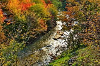Осенний пейзаж / Горная река