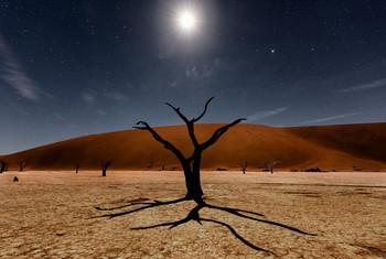 Полнолуние / Долина Дедвлей, Намибия