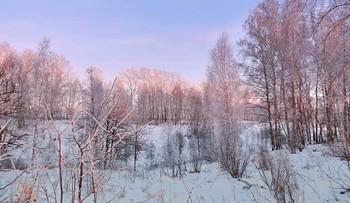 Вечерняя солнечная подсветка / Вечерняя солнечная подсветка деревьев покрытых инеем