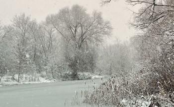 Снежная пелена / А снег всё падал и падал