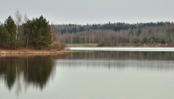 Лёд на озере почти сошёл / Лёд на озере почти сошёл,  Месяц март уже прошёл. Лес наш оживать вдруг стал,  Ох, народ от зимушки устал.