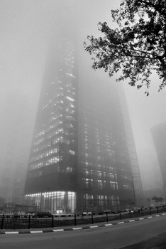 утопая в январском тумане / Раннее январское утро в Рамат-Гане.