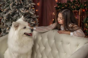 На белоснежном диване / модели Валерия Дедюрина и Бэлла локация фотостудия «Косплей»