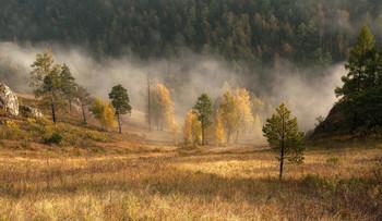 Осенний утренний туман. / Тсргашинский хребет.