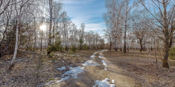 В лесу,где только снег растаял... / Март.