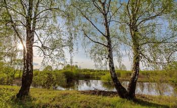 На берегу реки весенней... / Майские закаты.