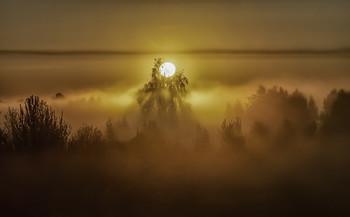 Миколині тумани... / 10.05.2021
