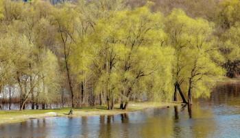 Наедине с Весной. / Весна рыбака.