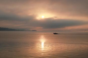 Розовый туман. / Утро туманное в Кинешме.