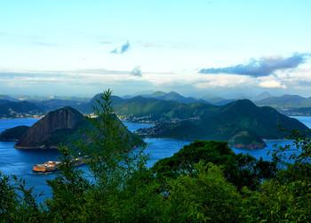 Вечер в Рио / ***