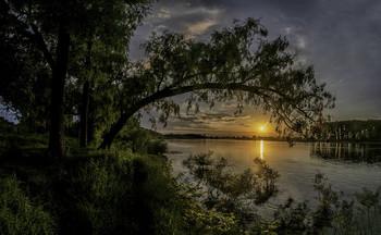 Краса земна... / 19.06.2021. річка Десна, місто Остер.