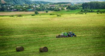 Заготовка кормов / трактор, поле, лес