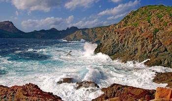 В лучах солнца.. / Набежали тучи и подул ветер... На острове Корсика.См.в полном формате.