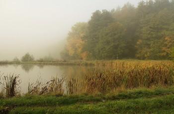 У озера .. / Когда уходящему туману приходит солнышко . Осенний пейзаж.