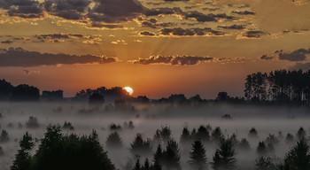 Миколині тумани... / 11.07.2021. річка Остер, село Бірки.